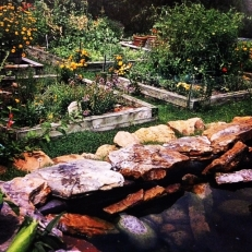 The pond overlooks the vegetable beds.