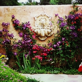 The pale-hued wall fountain that provides the perfect canvas for colorful flowers.