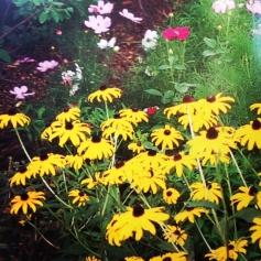 Weigand Garden 1