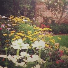 Weigand Garden 2