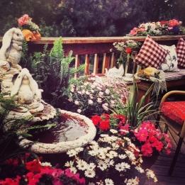 Colorful annuals surround the fountain.