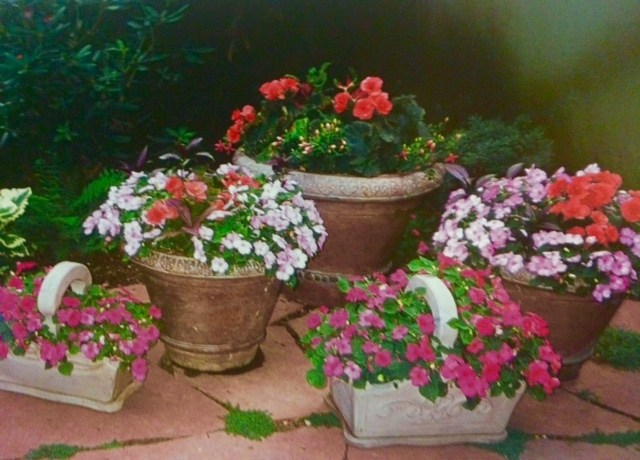 A charming cluster of stone pots and baskets.