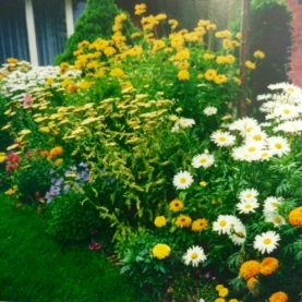 A Well-Planned Perennial Bed